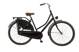 Image result for omafiets